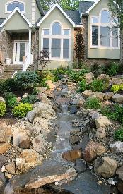 Water feature, planting